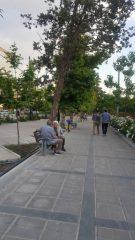 پیاده روی بهاره در طولانی ترین خیابان خاورمیانه
