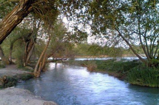 ناژوان اندر خم کوچه شورای عالی شهرسازی و معماری