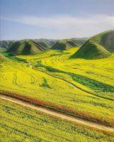 تپه ماورهای هزاردره